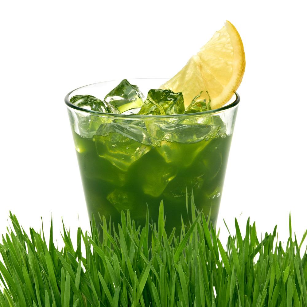 wheatgrass powder juice.organic wheatgrass powder juice,wheatgrass powder for hralth ,wheatgrass powder