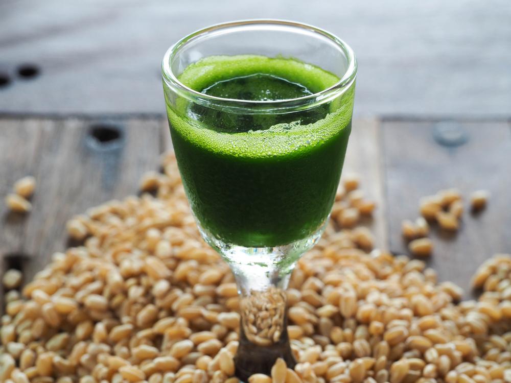 Fresh organic Wheatgrass juice,wheatgrass juice,wheatgrass,how to make fresh organic wheatgrass juice